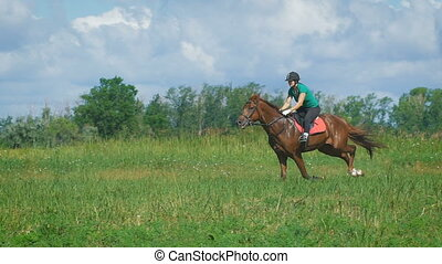 Beautiful girl riding a horse in countryside. Gallop -...