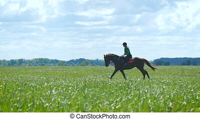 Beautiful girl riding a horse in countryside. Gallop slow...