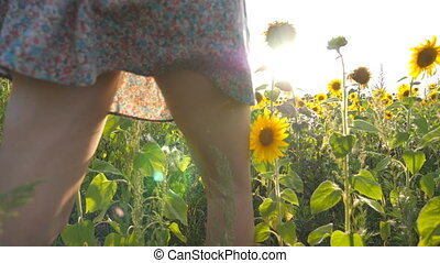 Beautiful girl running to the sun on yellow sunflower field. Happy woman jogging through meadow at sunset. Freedom concept. Slow motion Rear Back view