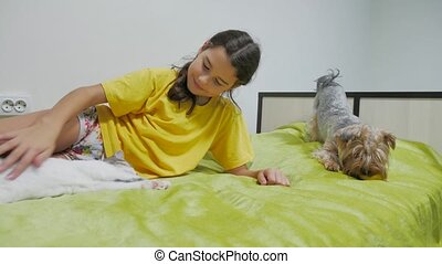 Beautiful girl teen and cat. girl cat and dog playing on the...
