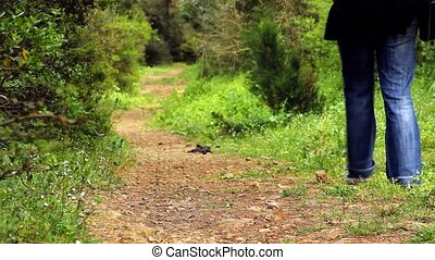 beautiful girl walking on the path