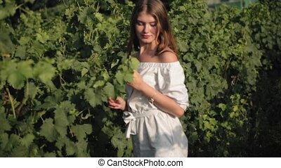Beautiful girl with long hair in dress spends time in vineyards