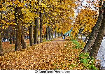 Beautiful golden autumn in the city park.
