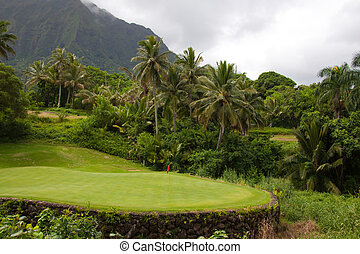 Beautiful Golf Course - A great tropical golf course on oahu...