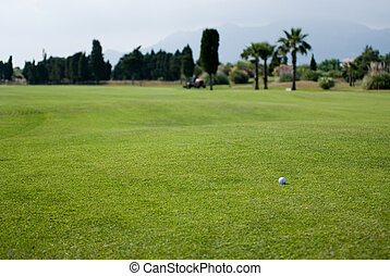 Beautiful golf course - Shot of a golf course with palm ...