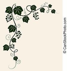 Beautiful grape vine. - Beautiful grape vine green...