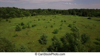 Beautiful green fields and forest aerial view on a summer...