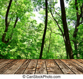 Beautiful green forest with wood planks floor