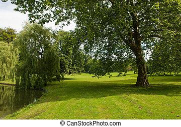 Beautiful green garden park