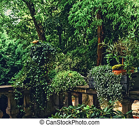 Beautiful green garden with flowers on luxury backyard