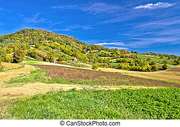 Beautiful green hill with vineyard cottages, Kalnik...