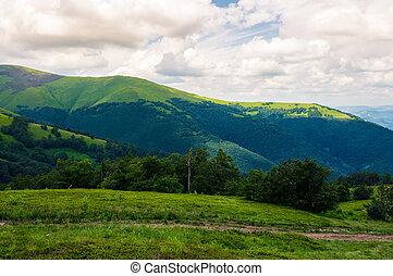beautiful green hills of Borzhava mountain ridge. lovely...