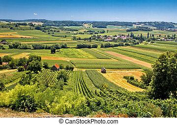 Beautiful green landscape in Kalnik vineyard area, Prigorje...
