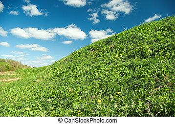 .Beautiful Green Meadow