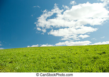 Beautiful Green Meadow with white clouds,