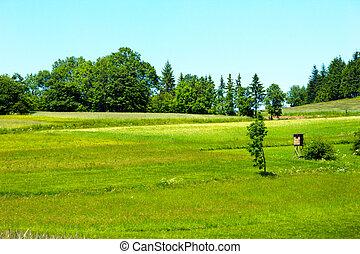 Beautiful green meadows in landscape