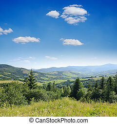 Beautiful green mountain landscape with trees in Carpathians...