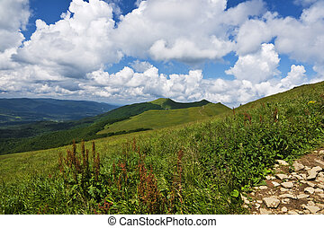 Beautiful green mountains in Poland of Bieszcady