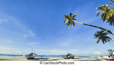 Beautiful green palm trees. Landscape of boats on the beach on background of blue sea and sky with clouds