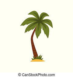 Beautiful green tropical palm tree vector Illustration on a white background