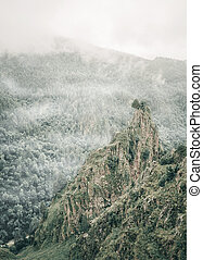 Beautiful greenery cliff. - Beautiful greenery cliff in the...