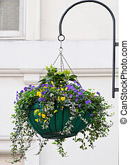 hanging flower box