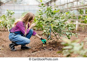 Beautiful hardworking woman taking care of the garden