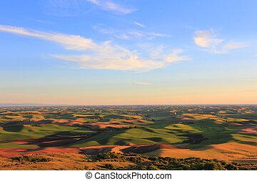 Beautiful Hills of Palouse
