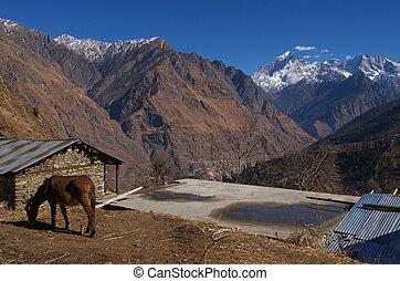 Beautiful Himalayan landscape