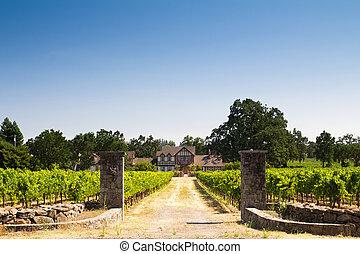 Farmer house in a vineyard
