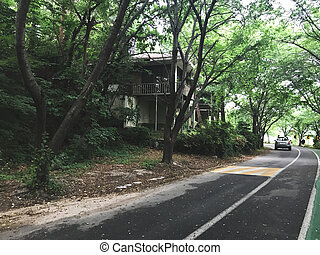 Beautiful house in the forest. Spouth Korea