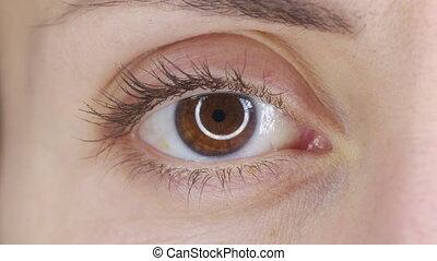 Beautiful human eye close-up. Young Woman brown one eye. Macro Closeup eye blinking and looking. Eyelid, iris, Eyesight concept