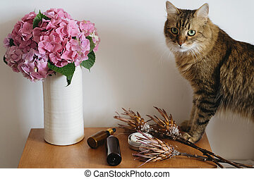 Beautiful hydrangea bouquet in vase, curious tabby cat and zero waste hygiene essentials on wooden table in room. Pink and purple hydrangea flowers and Maine Coon cat