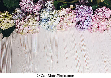 Beautiful hydrangea flowers on rustic white wood. Colorful pink,blue,green,white border of hydrangea, greeting card with space for text. Hello spring. Happy mothers day. Women day