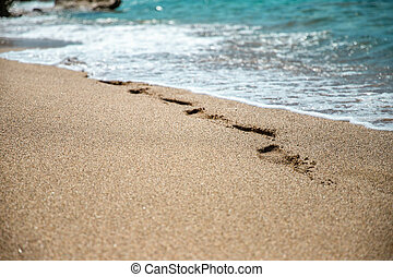 Beautiful image of footprints in the sand