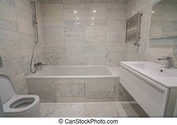 beautiful interior bathroom of a modern house