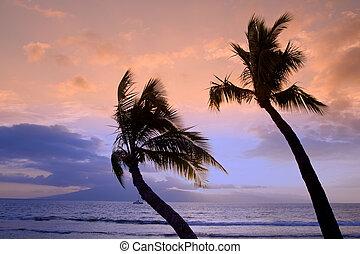 Beautiful Island Sunset