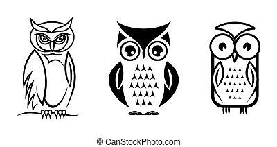 Beautiful isolated owl set