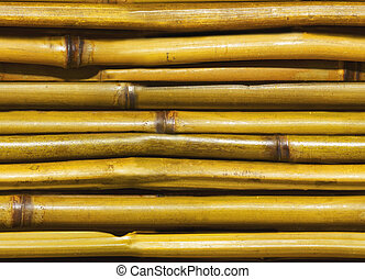 beautiful Japanese bamboo background
