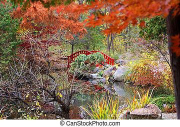 Japanese garden in the autumn