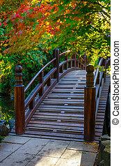 Beautiful japanese garden with bridge in autumn time