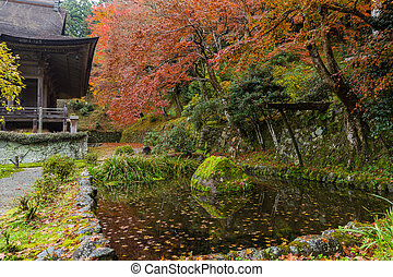 Beautiful Japanese park in autumn
