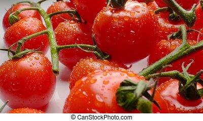 Beautiful juicy cherry tomatoes on a branch. Macro shoot