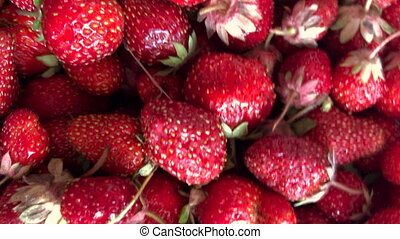 beautiful juicy red strawberries lies in a box