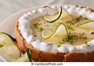 Beautiful key lime pie with whipped cream and peel close-up...