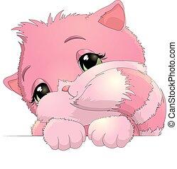 Beautiful kitten on a white background - beautiful kitten...