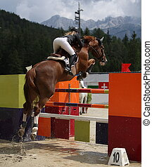 Beautiful lady jumping with her stud horse during a show jumping competition