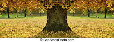 Beautiful, lady of colour autumn mood