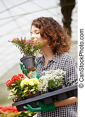beautiful lady working in a plant nursery