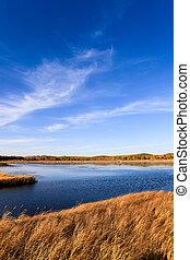 lake and wetland at autumn